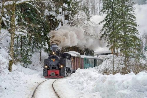 Romanian places to visit_Mocănița train